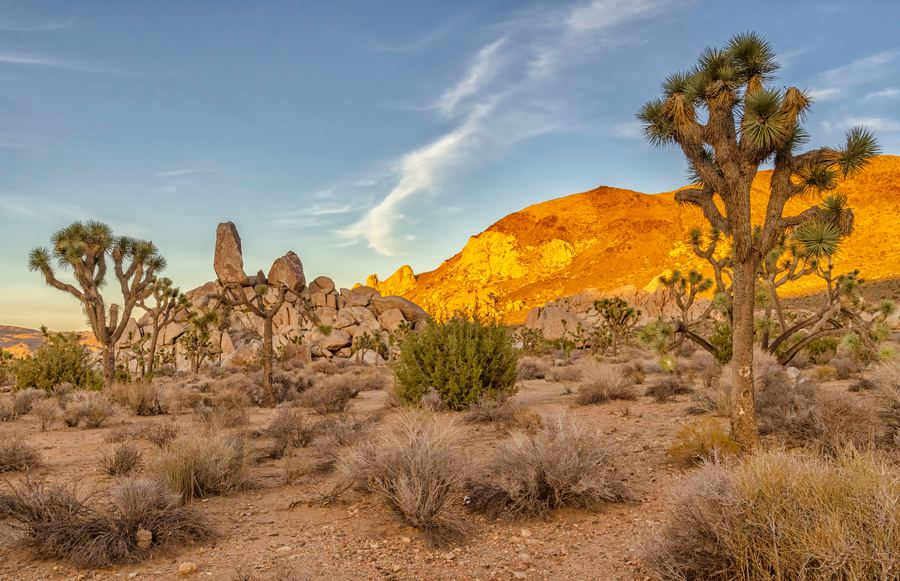 The 8 Best National Parks to Visit in the Summer