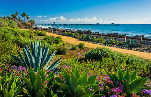 These Are the 7 Best Things To Do In Orange County