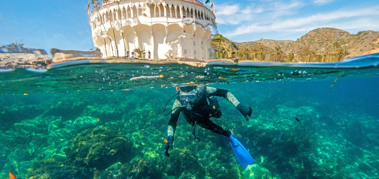 These 9 Spots Offer The Best Snorkeling in California