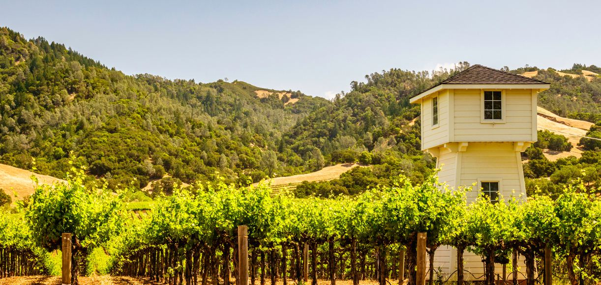 10 Things To Do in Sonoma You Haven't Thought of Yet
