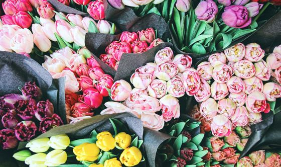 Brighten the Room and Your Mood: Why All Days Deserve Cards and Bouquets