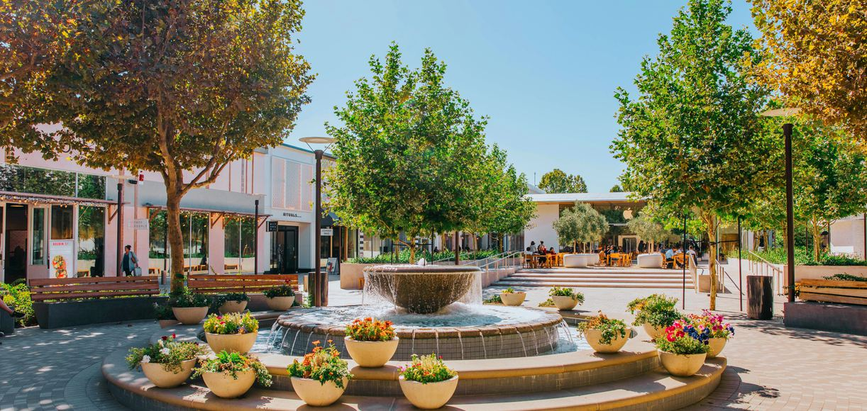 East Bay City Guide: A Day in Walnut Creek