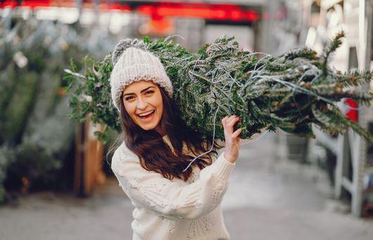 California Christmas Tree Farms to Visit Now