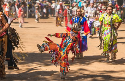 Californian Tribes: A Regional Guide to the Golden State's Indigenous Peoples