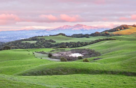 Explore Contra Costa County's Family-Friendly Towns and Wide Open Spaces