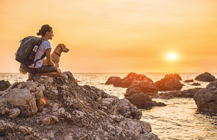 The 7 Best Dog-Friendly Hikes in the Bay Area