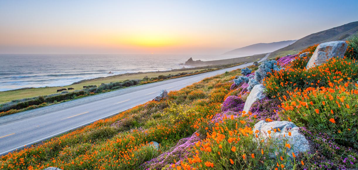 Every Stop You Need to Make When Driving in Big Sur