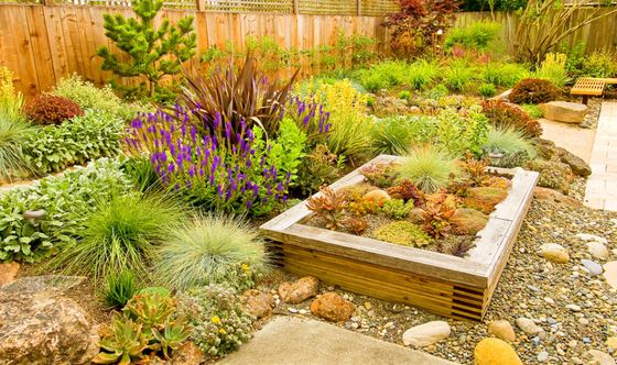A Guide to Easy Drought-Tolerant Landscaping in California