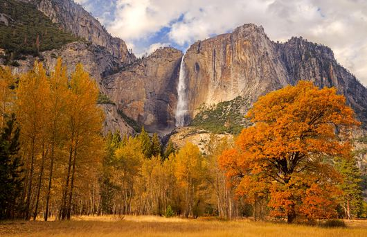 Where to See California's Fall Foliage in Every Region