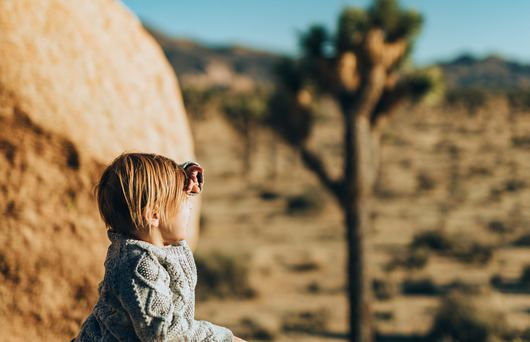The 15 Best California Attractions for Families