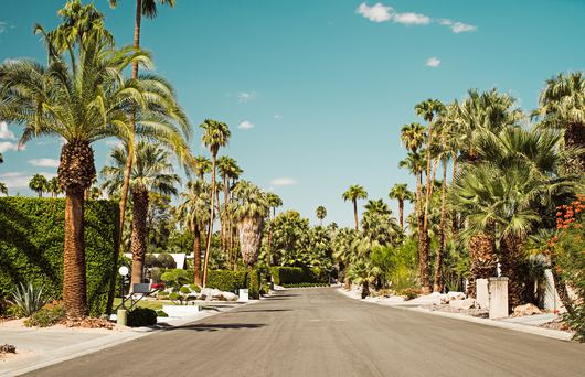 Cool Free Things To Do in Palm Springs