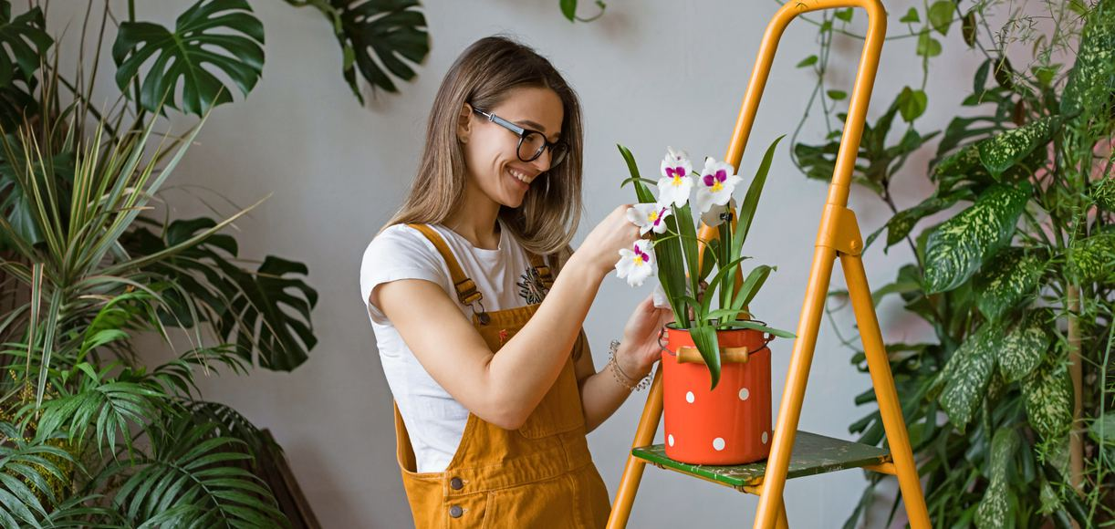 Everything You Need to Know About Gardening in California