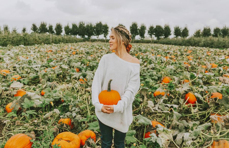 The Gourd-geous Bay Area Pumpkin Patches That Are Anything But Basic