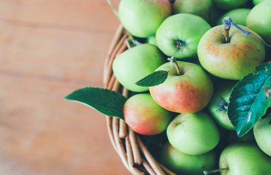 An Apple a Day Means One Thing: The Gravenstein Apple Fair is Here