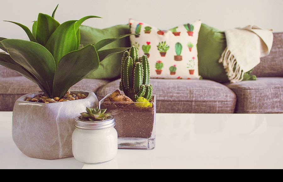 California Chic: The Home Decor Boutiques You Can't Miss