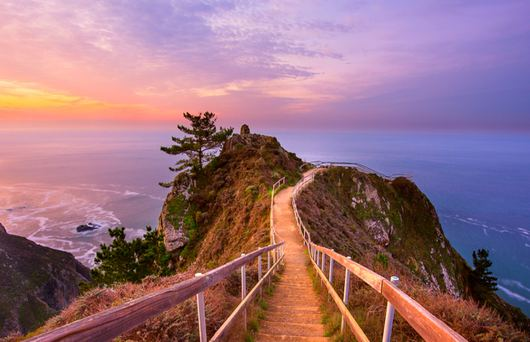 The Bay Area's Best Mountain Hikes