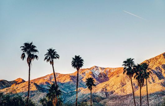 Getaway Guide: Palm Springs