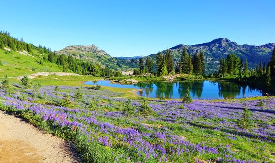 Traversing Trails: Introduction to the Pacific Crest Trail