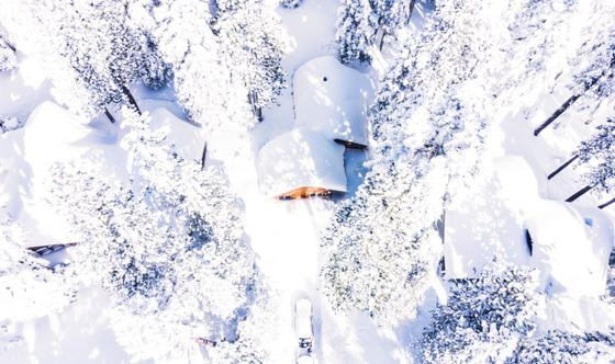 Powdered Slopes & Panoramic Scenery: The California Ski Tour to Take This Year