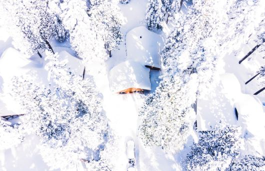 Powdered Slopes & Panoramic Scenery: The California Ski Tour to Take This Year