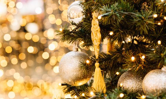 Deck The Halls: The S.F. Christmas Tree Lighting You Can't Miss