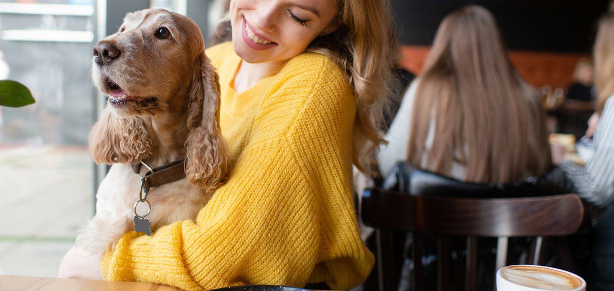 The Top 7 Dog Friendly Restaurants in San Diego