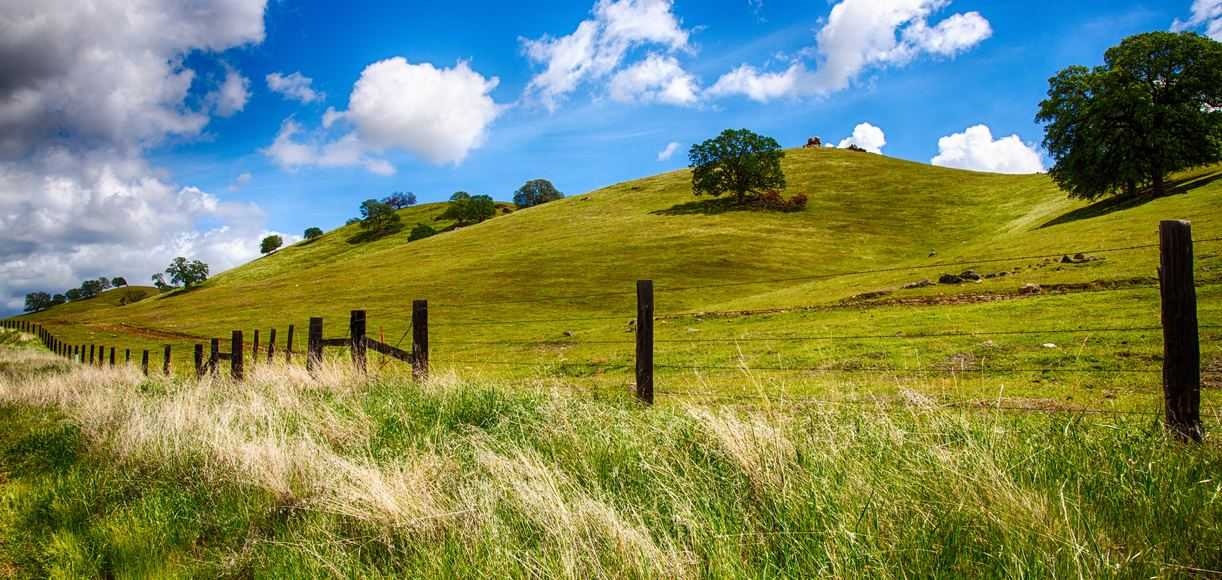 10 Can't-Miss Central Valley Hiking Trails