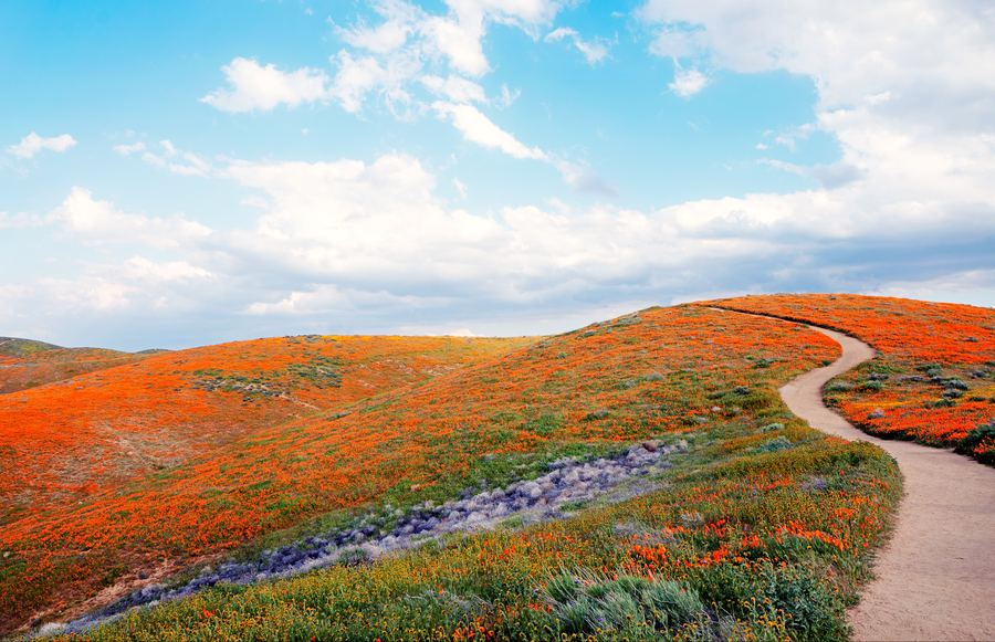 The 13 Best Hikes in Southern California to Take This Spring