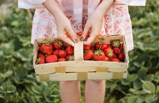 7 Ways to Take Advantage of Strawberry Season in California