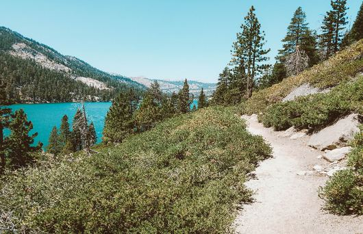 Traversing Trails: Hiking The Tahoe Rim Trail