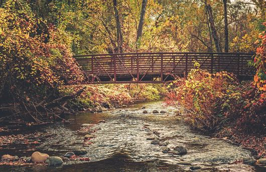 7 Top Things To Do in Chico