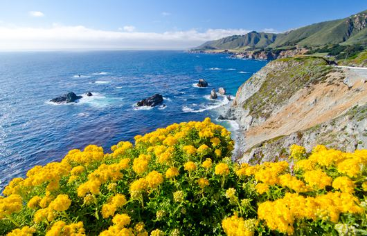 15 Unexpected Things to do in Carmel-by-the-Sea