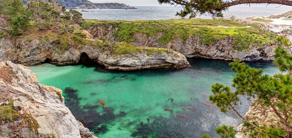 17 Unique Things To Do in Monterey, CA That Locals Don't Want You To Know About