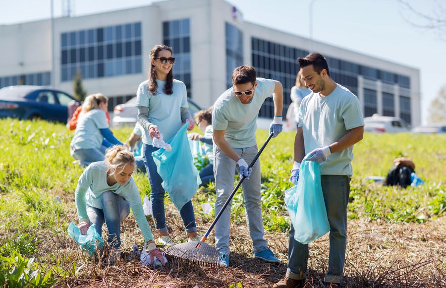 Volunteer in California with These Incredible Organizations
