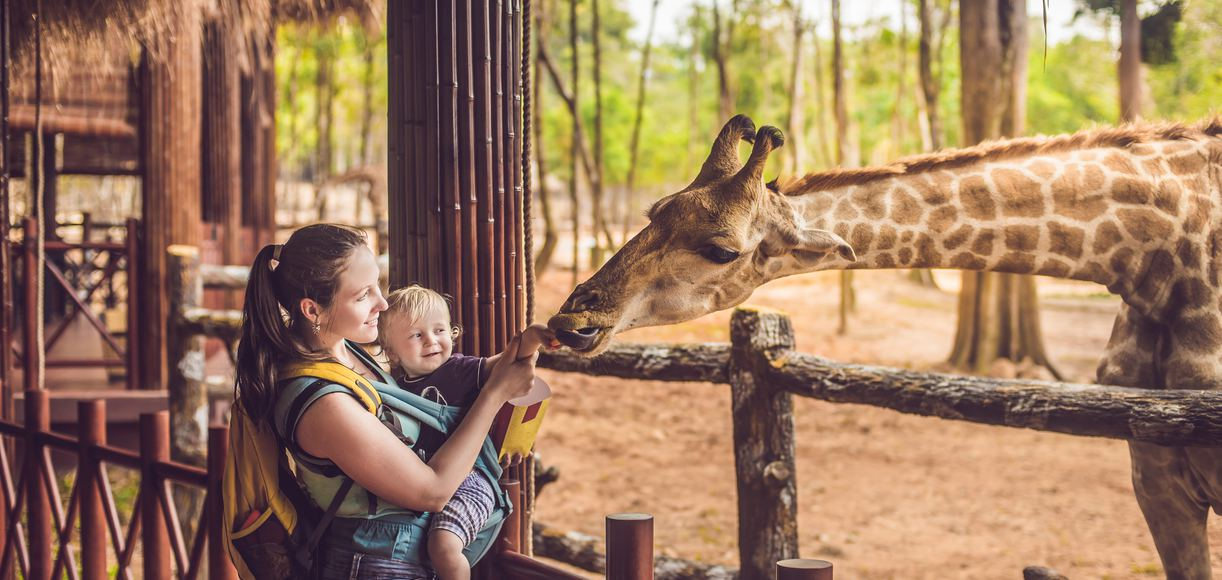 11 Zoos in Northern California You Won't Want to Miss