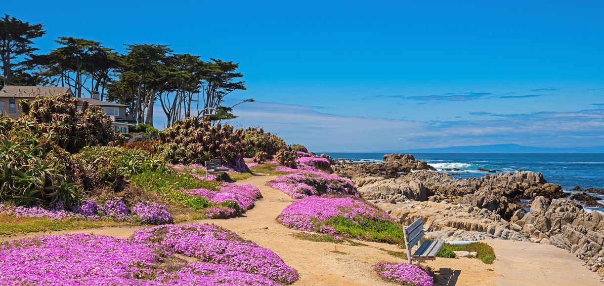 The Best Hikes in Monterey to Trek Year-Round