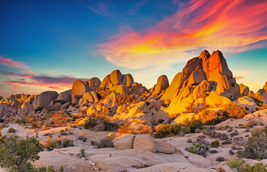 Fun Facts About California's Deserts