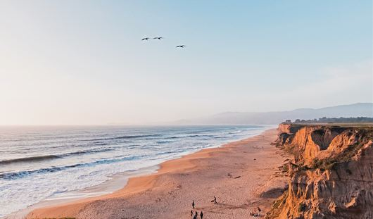 California article