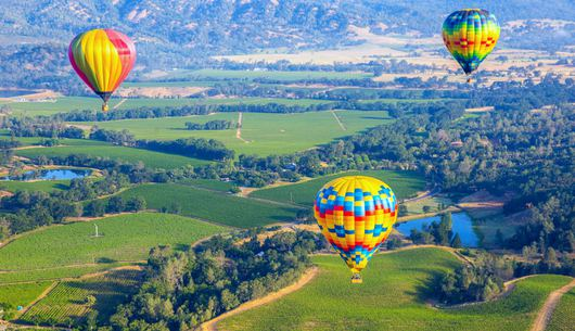 Hold the Wine: 11 Things to Do in Wine Country that Don't Involve Drinking
