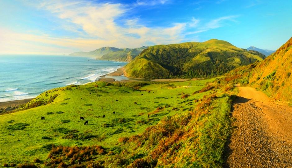 Traversing Trails: The Lost Coast