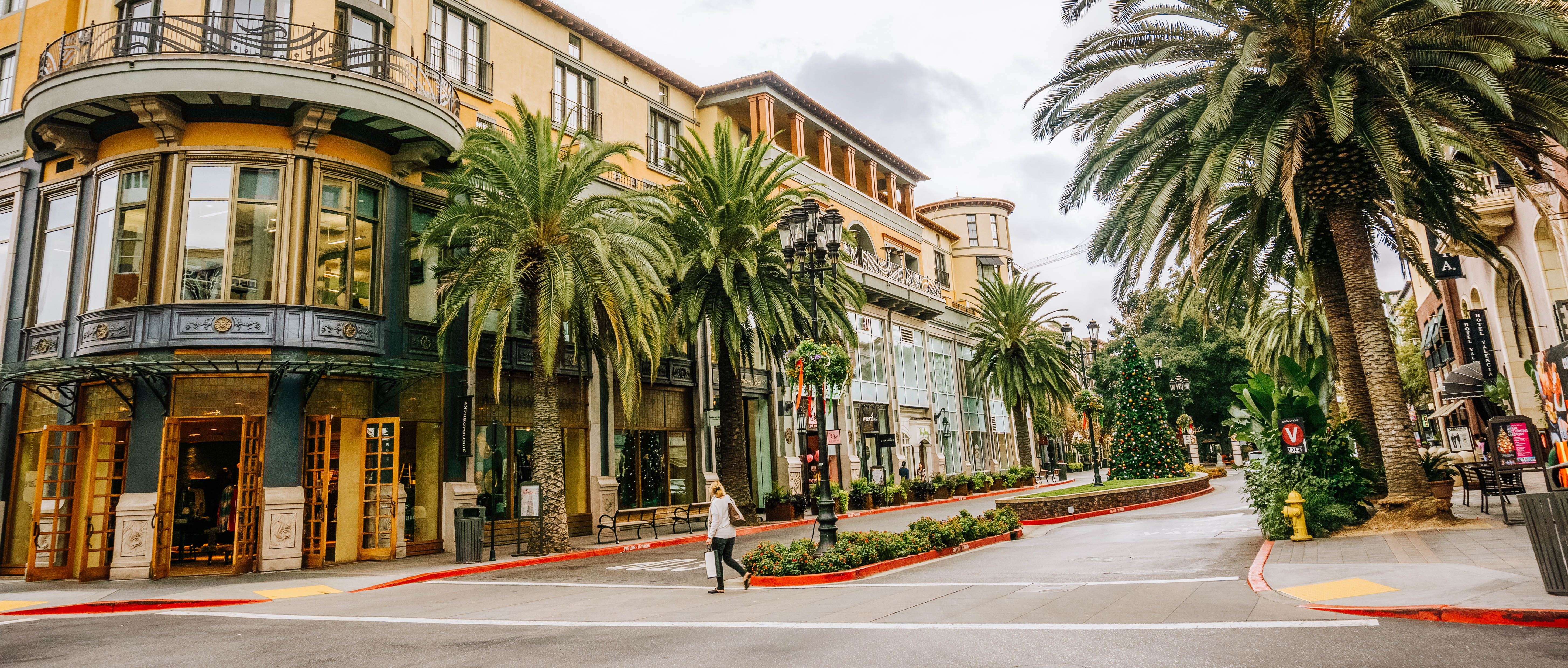 South Bay Adventures: The Best Things to do in the South Bay